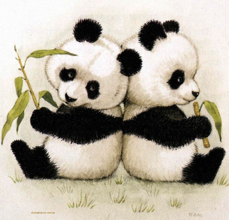 gifs et tubes pandas koalas page 5. Black Bedroom Furniture Sets. Home Design Ideas