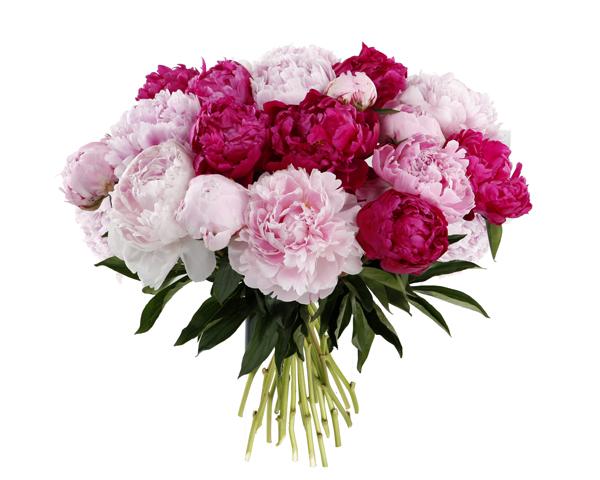 Résultat d'images pour Gifs bouquet de pivoines