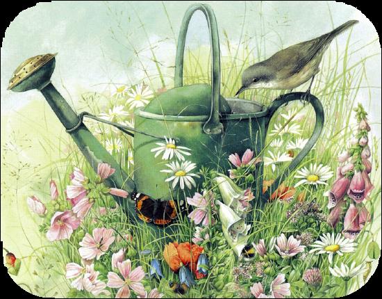Résultat d'images pour gifs arrosoir fleurs oiseaux